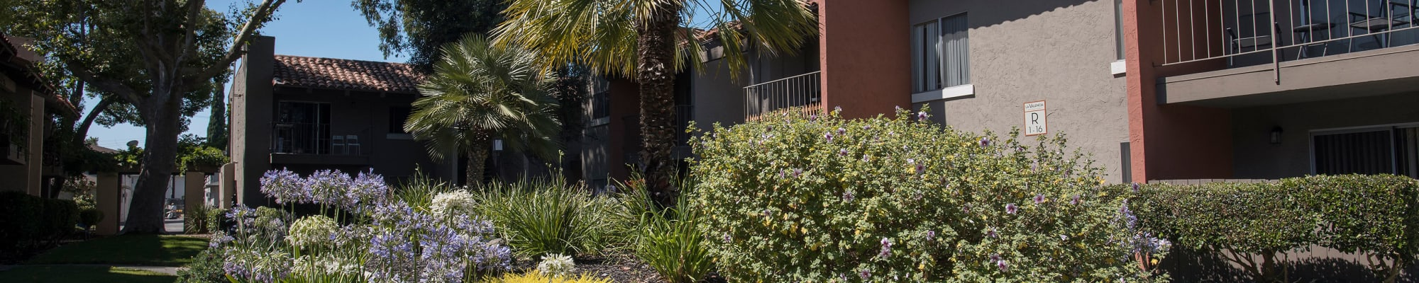 Photo gallery at La Valencia Apartment Homes in Campbell, California