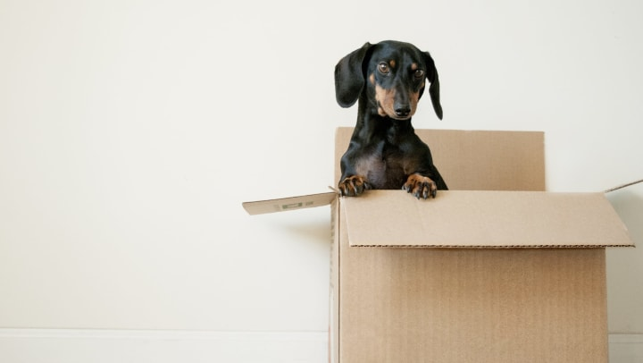 moving supply tips