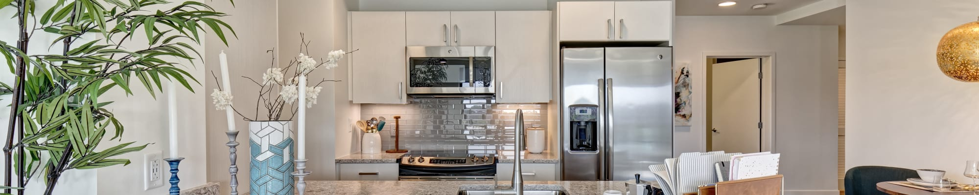 One bedroom apartments at Vela on the Park in Stamford, Connecticut