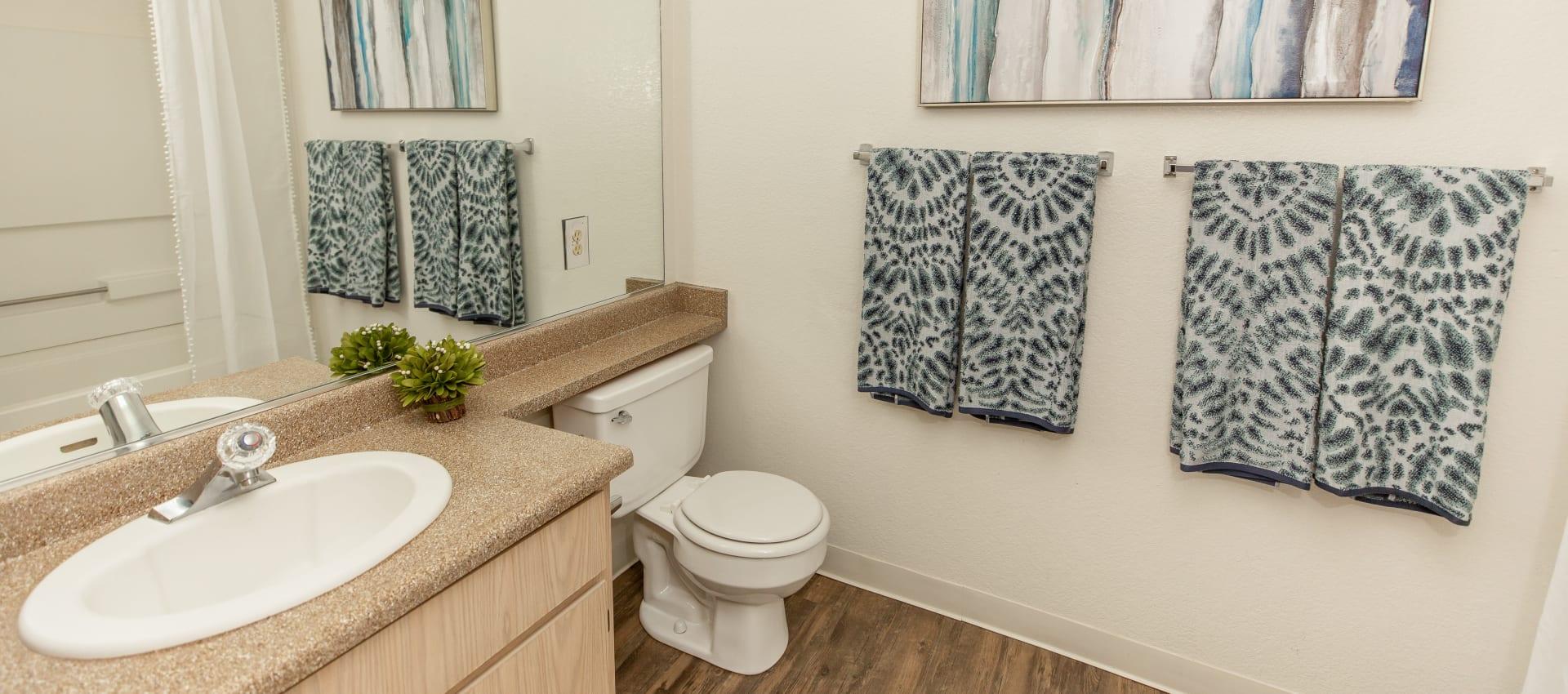 Bathroom at Shaliko in Rocklin, California.