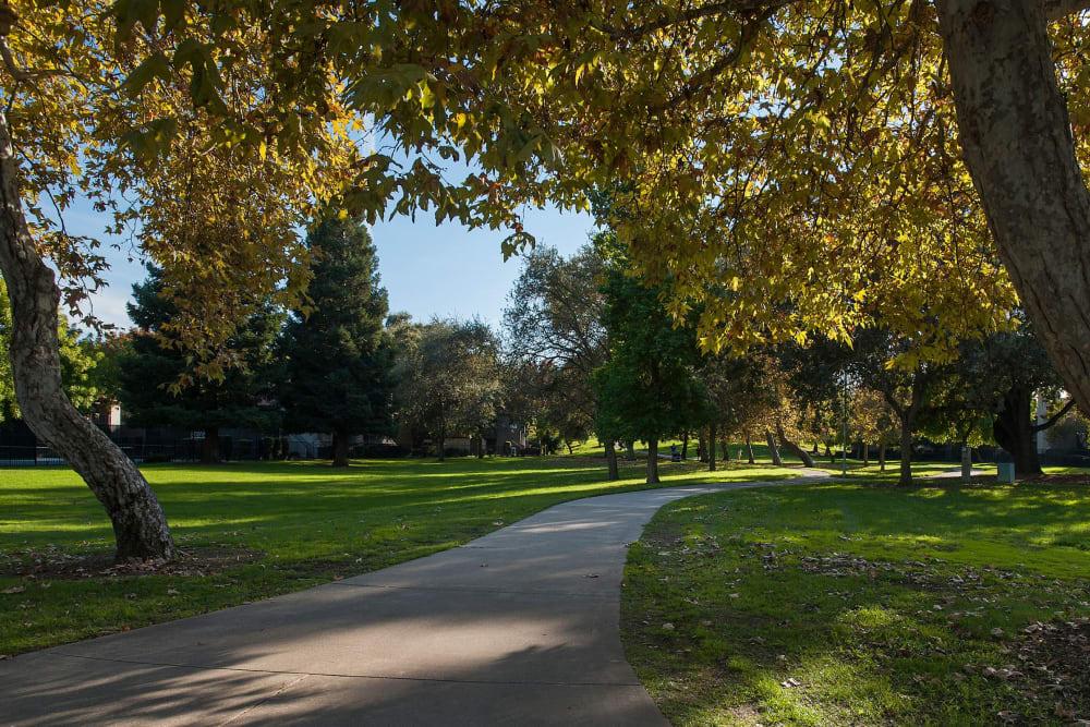 Beautiful park right next to Shore Park at Riverlake in Sacramento, California