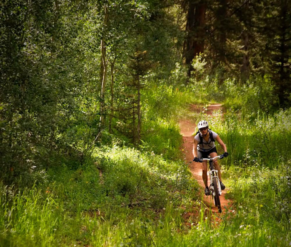 Resident going for a downhill bike ride through the forest near Fields on 15th Apartment Homes in Longmont, Colorado