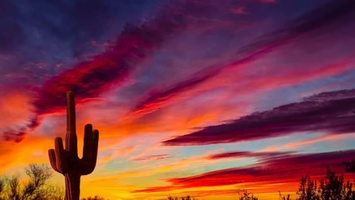 Beautiful sunset at a park near Redstone at SanTan Village in Gilbert, Arizona.