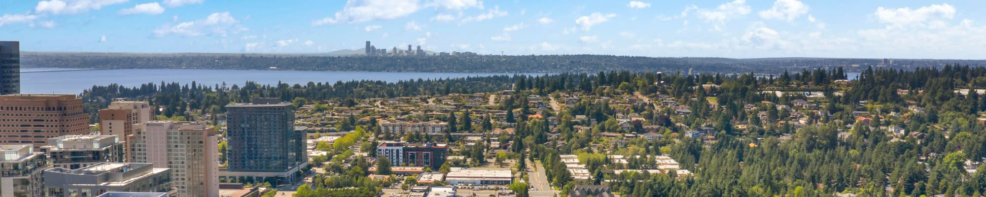 Our community at The Bellettini in Bellevue, Washington