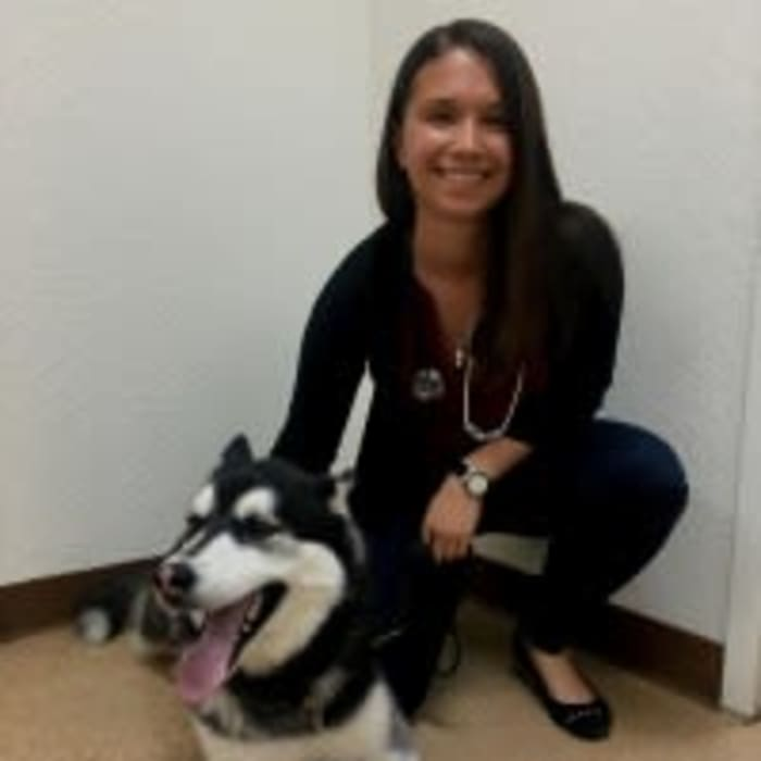 Dr. Jade Lanier at Arizona Avenue Animal Clinic in Chandler, AZ