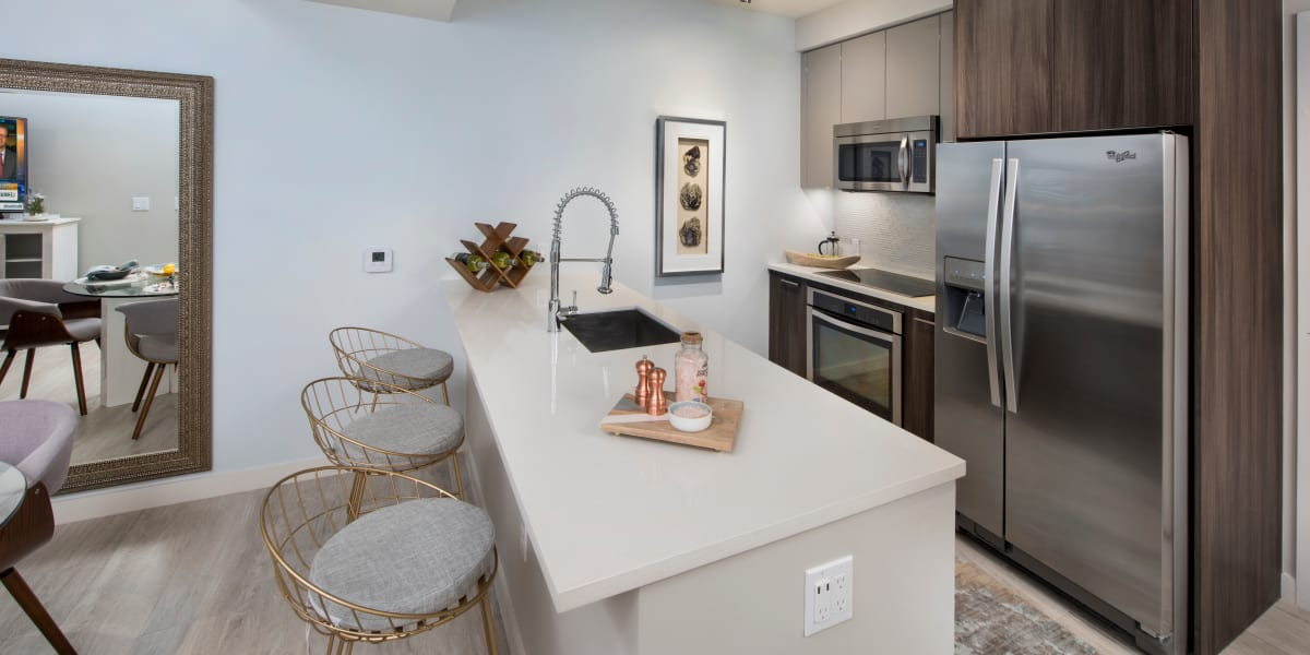 Harbor Group Management apartment kitchen with energy efficient appliances in Norfolk, Virginia