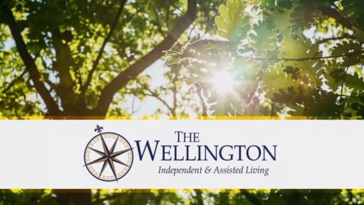 Trees with sun shining through and the wellington logo on a white banner