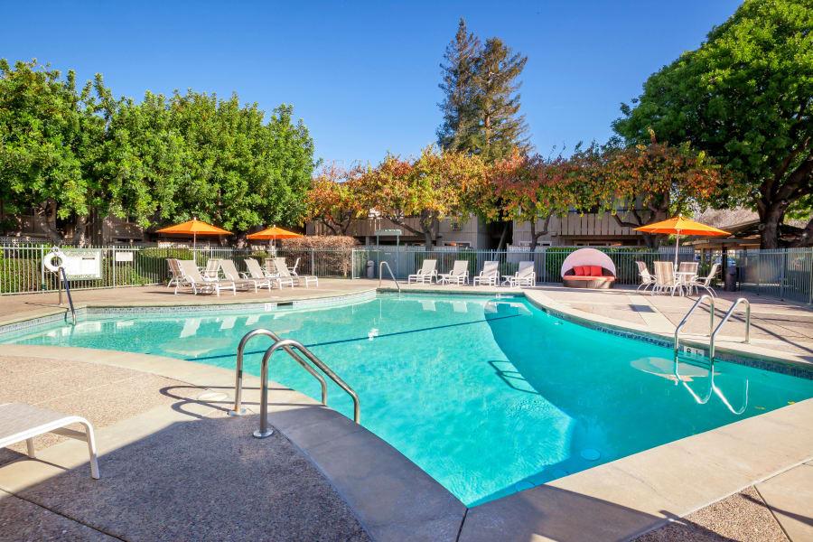The Shadows Apartments pool