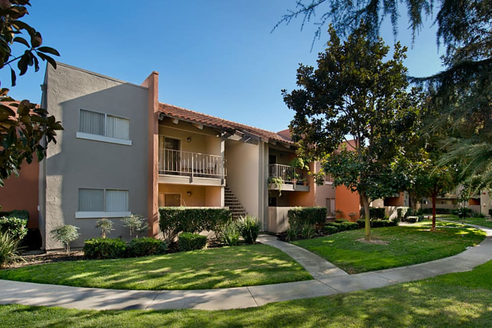 Large grass lawn for summer picnics at La Valencia Apartment Homes in Campbell, California