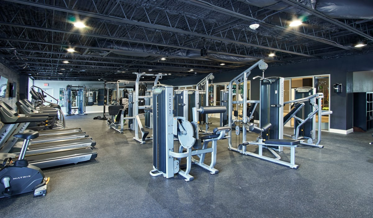Gym at The Wayland in St Petersburg, Florida