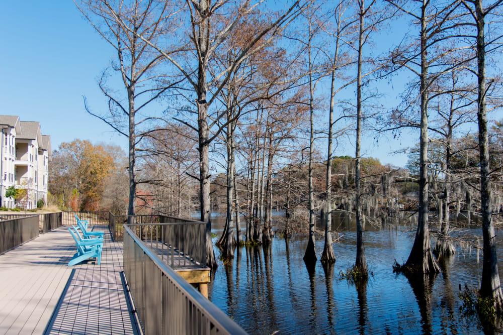 Bayou Views at The Reserve on Bayou DeSiard in Monroe, Louisiana