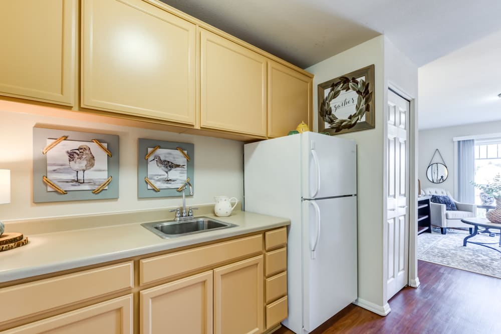 Kitchen in Independent Living