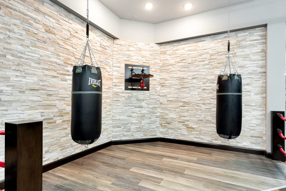 Punching bags at Villas at the Rim in San Antonio, Texas