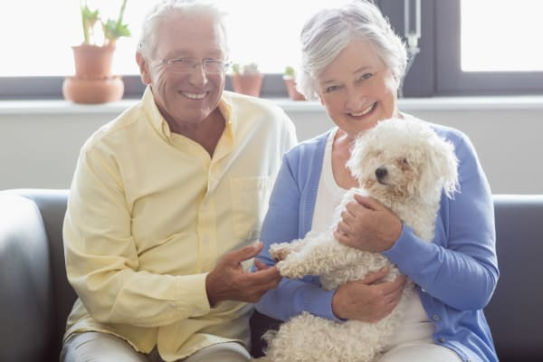 Oakleaf Village At Lexington is a pet friendly senior living community in Lexington!