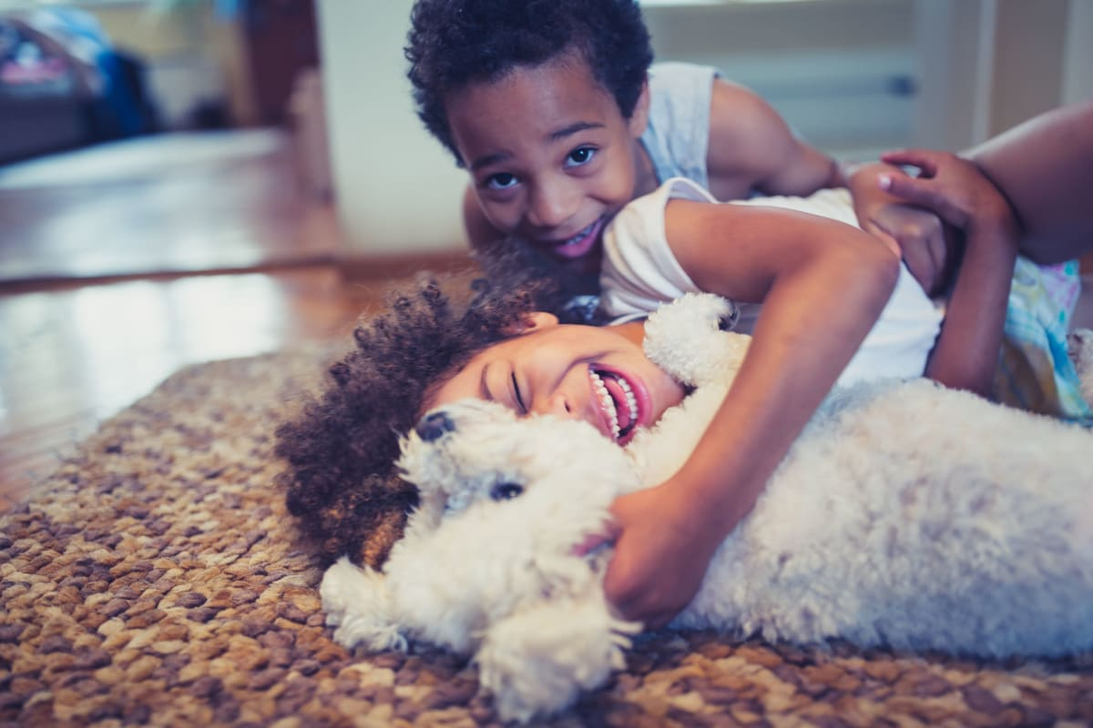 Children playing with their dog in their apartment home at The Pointe at Siena Ridge in Davenport, Florida