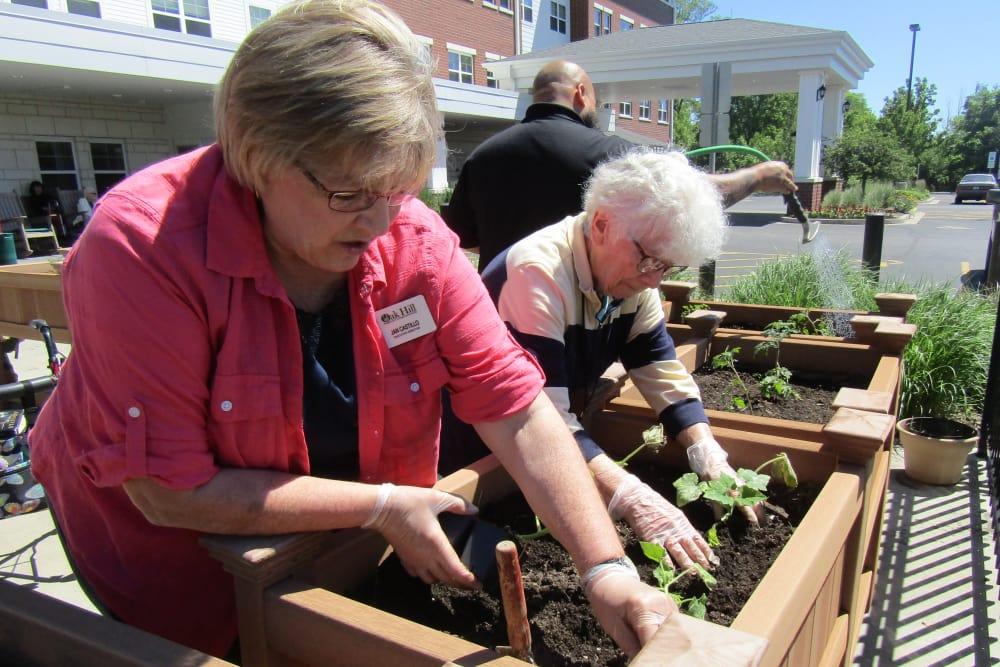 two senior residents gardening