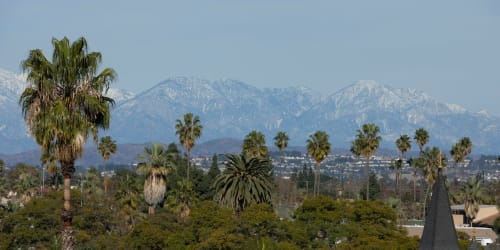 A view of mountains and palm trees near Palisades Sierra Del Oro in Corona, California