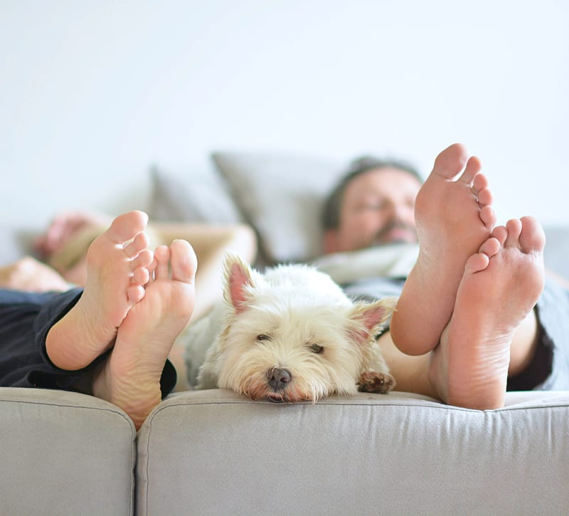 Residents relaxing on the couch with their dog at Brakeley Gardens in Phillipsburg, New Jersey