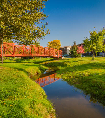 View the amenities at Creek Club Apartments in Williamston, Michigan