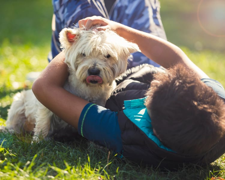 Resident child giving his dog some love on the grass outside their home at Alterra Apartments in Las Vegas, Nevada