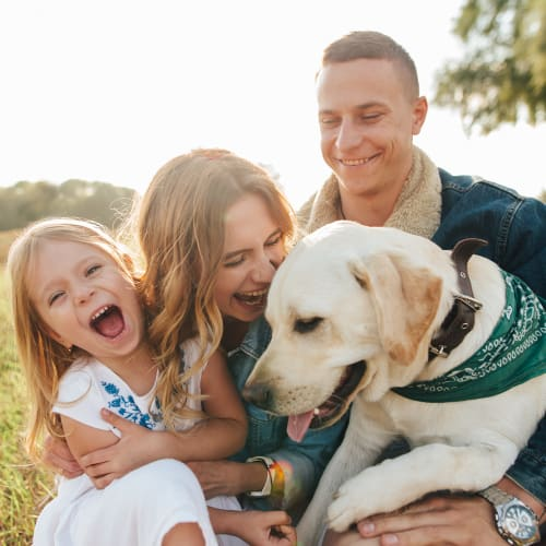 Family and their puppy playing outside at Olympus at Waterside Estates in Richmond, Texas