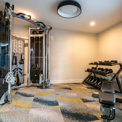 Free weights and weight machines in the fitness center at Terra Martinez in Martinez, California
