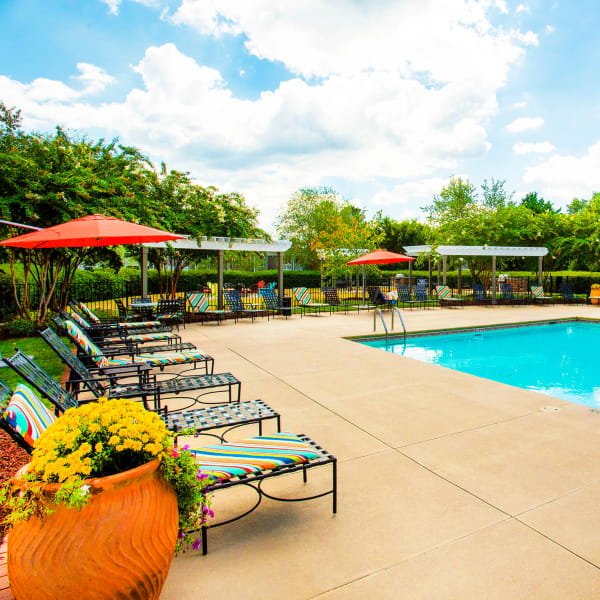 Chaise lounge chairs around the pool at The Seasons at Umstead in Raleigh, North Carolina