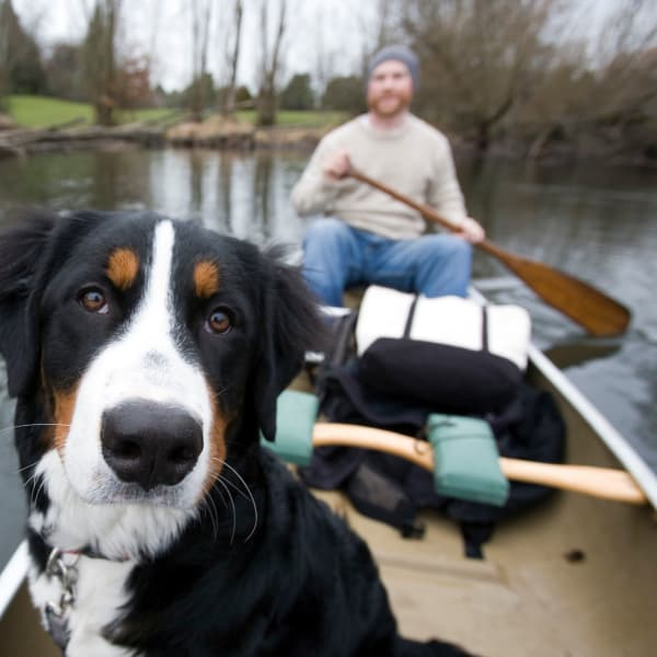 Resident and dog canoeing near Cielo in Seattle, Washington