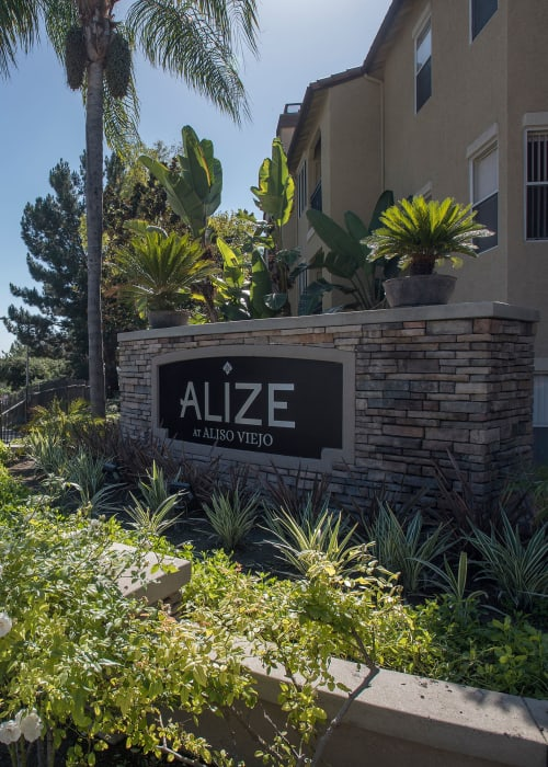 Beautifully manicured apartment sign at Alize at Aliso Viejo Apartment Homes in Aliso Viejo, California