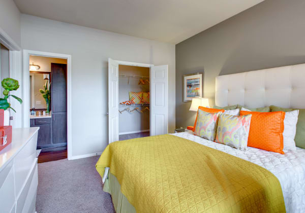 Luxury 1 2 bedroom apartments in austin tx - One bedroom apartments in austin ...
