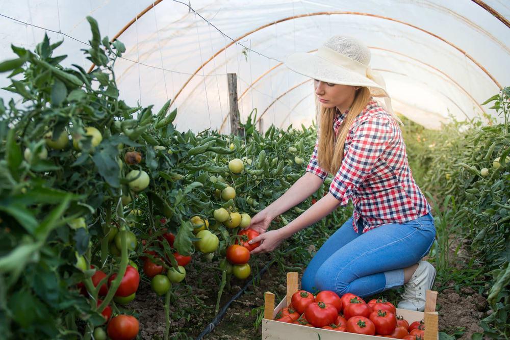 Woman gardening at Silver Companies