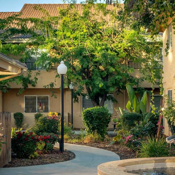 The courtyard at Pacifica Senior Living Fresno in Fresno, California.