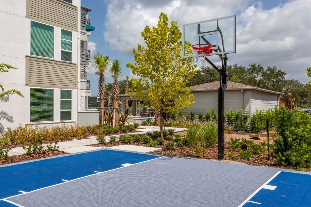 Onsite basketball courts at 50 Paramount in Sarasota, Florida