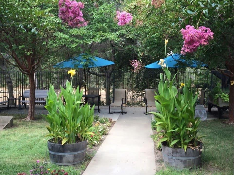 Sun Oak Courtyard