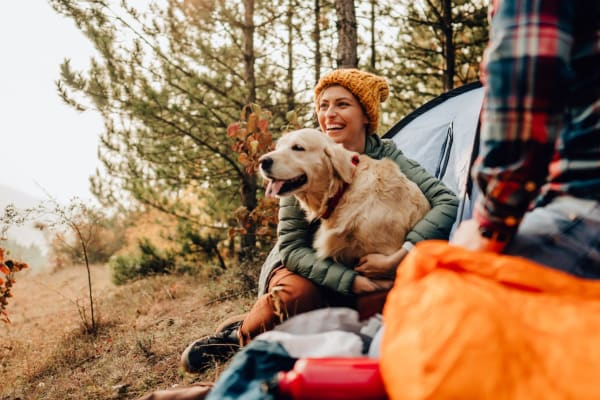 Happy dog out with their owner camping near Liberty SKY in Salt Lake City, Utah