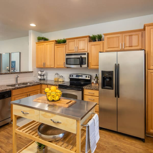 Stainless-steel appliances in the kitchen at The Fleetwood in Tempe, Arizona