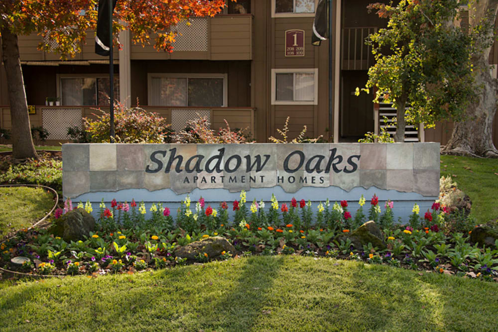 Beautiful landscaped location at Shadow Oaks Apartment Homes in Cupertino, California