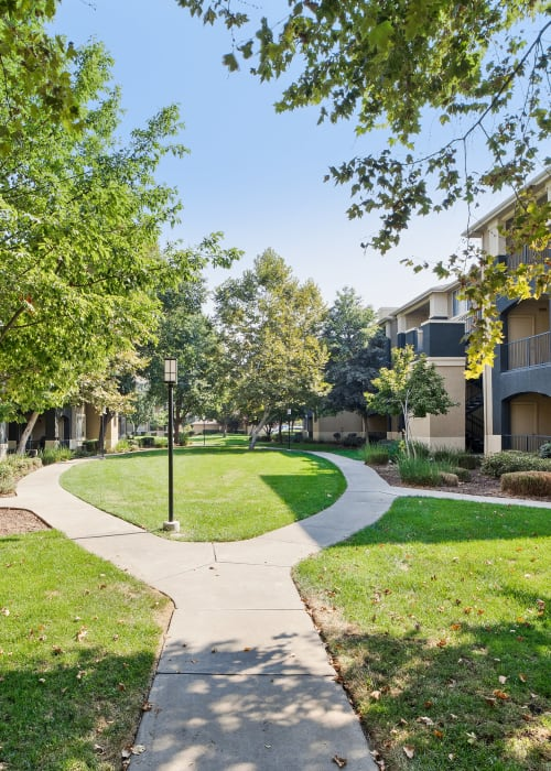Large grassy lawn for playing fetch with your furbaby at Cross Pointe Apartment Homes in Antioch, California