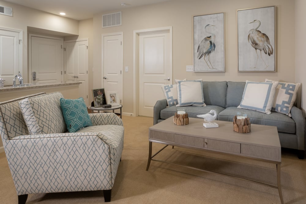 Living room at Harmony at Savannah in Savannah, Georgia
