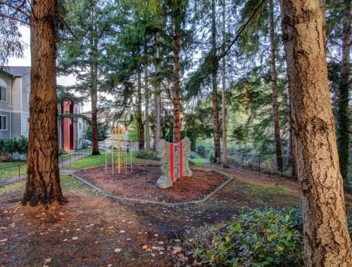 Children's playground with a rock wall at The Dakota Apartments in Lacey, Washington