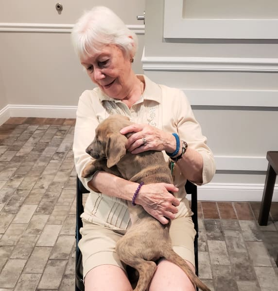 Woman holds puppy in her lap
