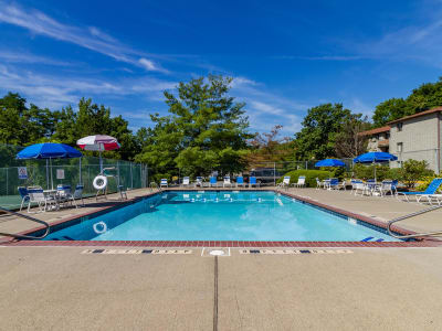 A sparkling swimming pool at Imperial Gardens Apartment Homes