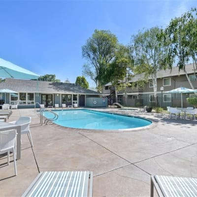 Swimming pool area on a beautiful day at Sofi Union City in Union City, California