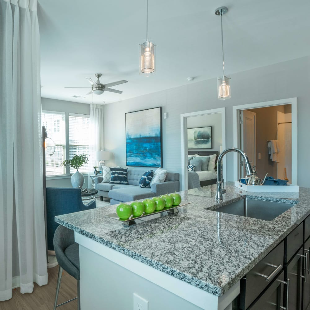 View from the kitchen overlooking the living room at Elevate at Brighton Park in Summerville, South Carolina