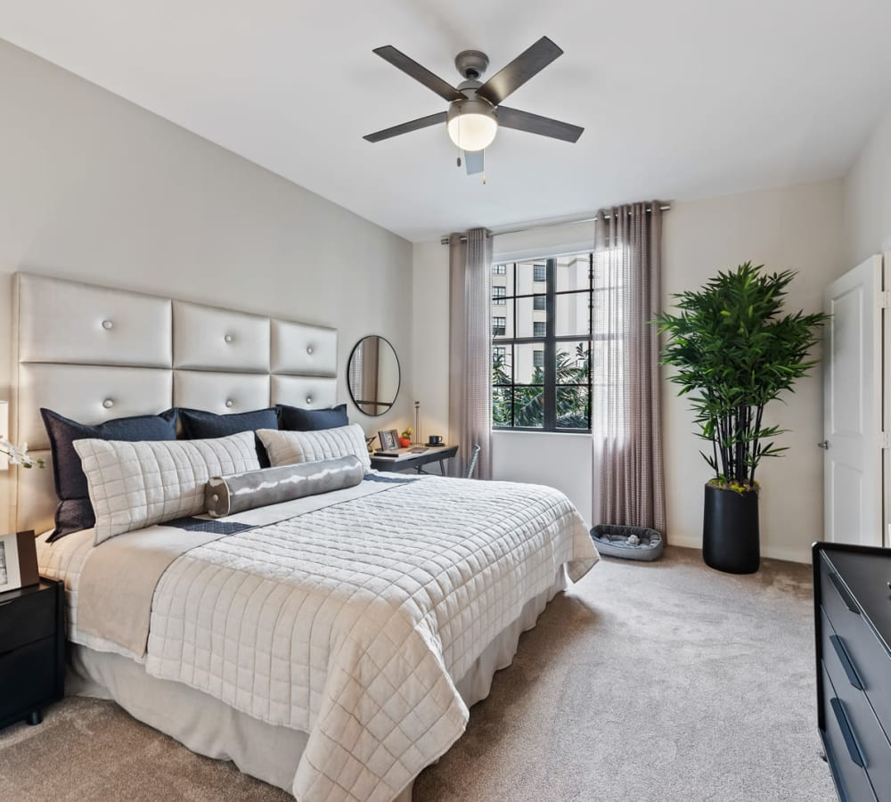 Large bedroom with carpet and ceiling fan at 6600 Main in Miami Lakes, Florida