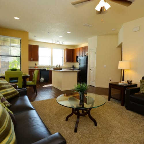 Well-furnished living space in a model home at The Hawthorne in Jacksonville, Florida