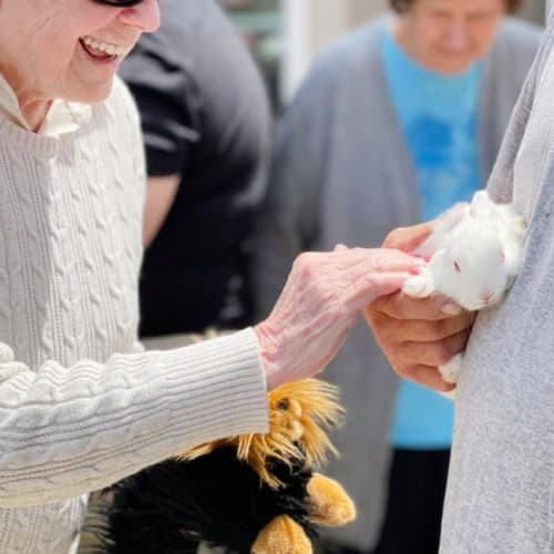 Resident interacting with a bunny at Oxford Glen Memory Care at Owasso in Owasso, Oklahoma