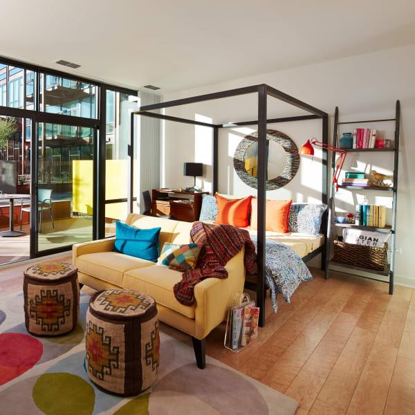 Hardwood floors and bay windows in model home at Domus in Phoenix, Arizona