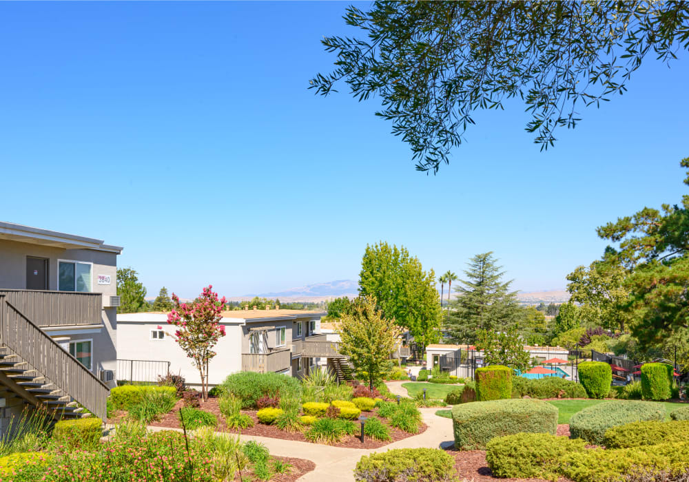 Scenic hillside community with well-manicured greenery at Pleasanton Heights in Pleasanton, California