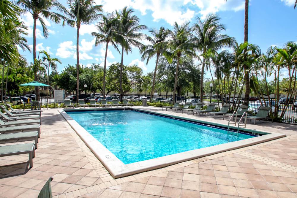 Sparkling swimming pool at Aliro in North Miami Beach, Florida